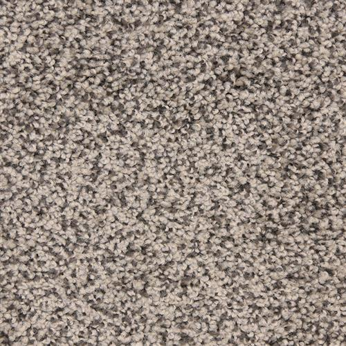 Leigh Way in Black Sand - Carpet by The Dixie Group
