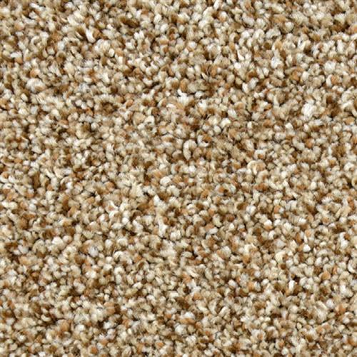 Magnificent Dried Grass 693