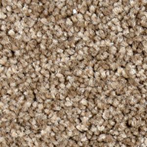 Carpet FirstStepSolid 4160 Barnwood