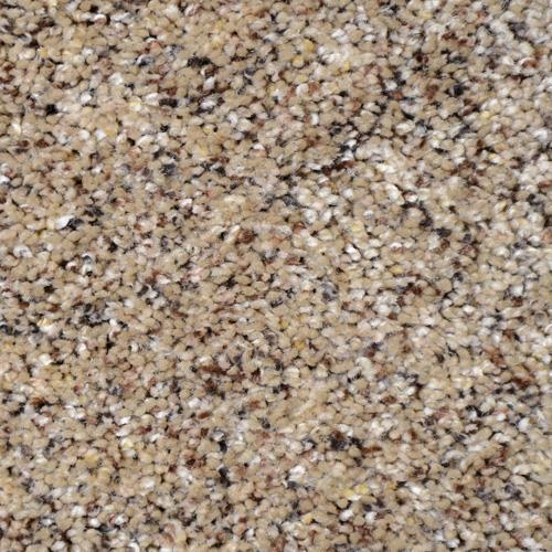Carpet Soft Harmony Pecan 588 main image
