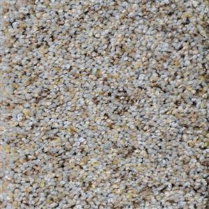 Carpet SoftHarmony 9440 MorningDove