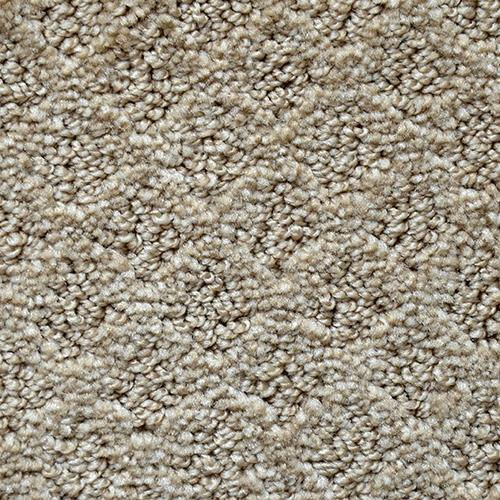 Shop for carpet in Martinez, GA from Augusta Flooring