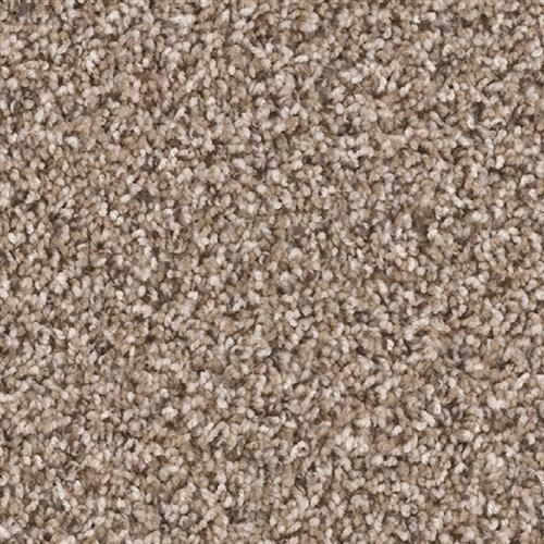 Shop for carpet in Houston, TX from Carpet Giant