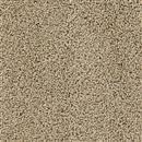 Carpet Talk of the Town Sable 510 thumbnail #1