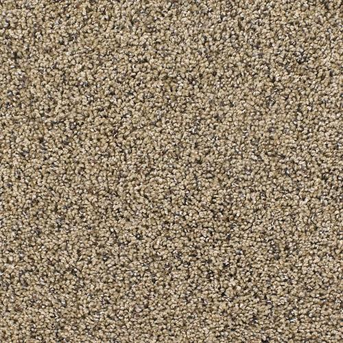 Carpet Talk of the Town Sandalwood 511 main image