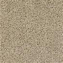 Carpet Talk of the Town Doeskin 530 thumbnail #1