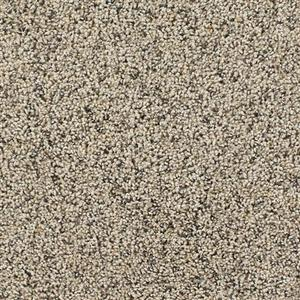 Carpet TalkoftheTown 5310 Vellum