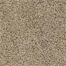 Carpet Talk of the Town Painted Tan 610 thumbnail #1