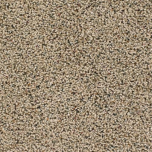Carpet Talk of the Town Painted Tan 610 main image