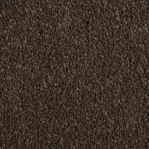 Sandlewood Cocoa 550