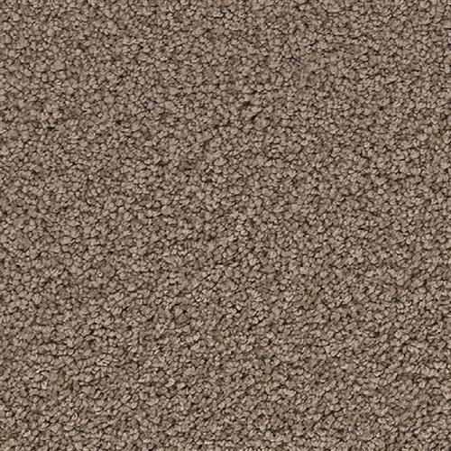 Dream Weaver Riverbank Nickel Carpet Baltimore Md