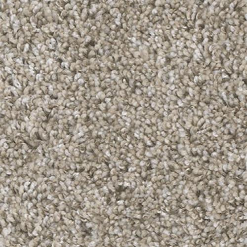 Shop for carpet in Grass Valley, CA from Premier Flooring Center