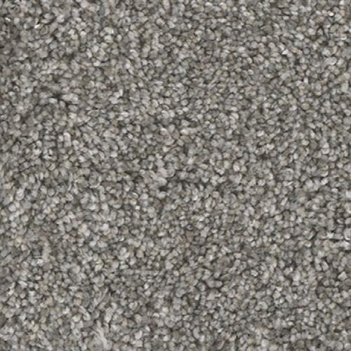 Flooring Companies Bay Area: Dream Weaver Jackson Hole II Alpine Bay Carpet