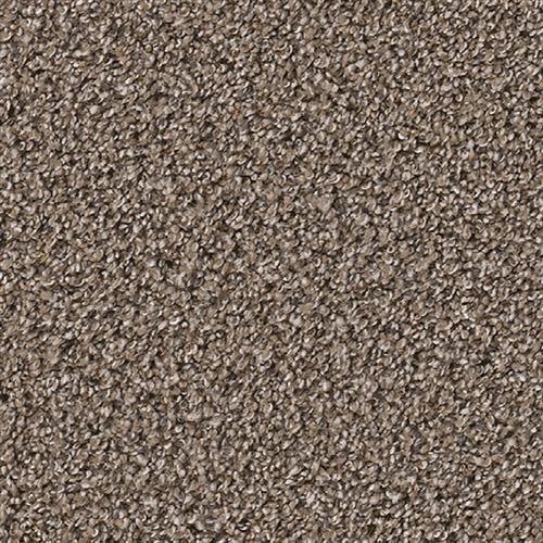 Dream Weaver Outstanding Silver Birch Carpet Irvine