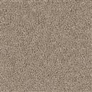 Carpet Cape Cod Mushroom 715 thumbnail #1