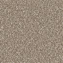 Carpet Cape Cod Acorn 858 thumbnail #1