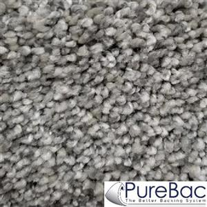 Carpet CasualComfortII12 CC2-40 Chicagoland