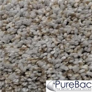 Carpet CasualComfortII12 CC2-47 Whiskers