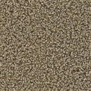 Carpet Cherry Creek Cane 373 thumbnail #1