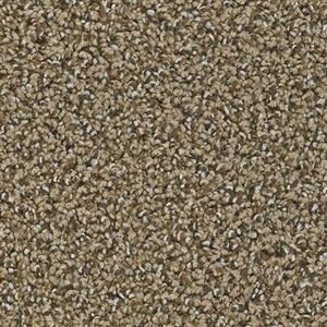 Carpet CherryCreek 3225 Cane