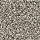 Carpet Cherry Creek Ironside 783 thumbnail #1