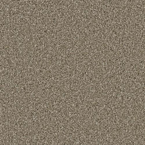 Dazzling Acorn 858