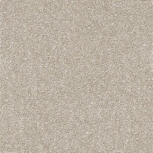 Carpet Brazen II Brandywine 245 main image