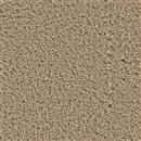 Carpet Applause Sand Bar 741 thumbnail #1