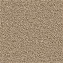 Carpet Applause Cortland 801 thumbnail #1