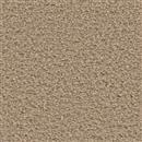 Carpet Applause Cortland 801 thumbnail #1