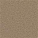 Carpet Applause Charter Oak 805 thumbnail #1