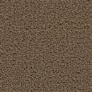 Carpet Applause Buckskin 854 thumbnail #1