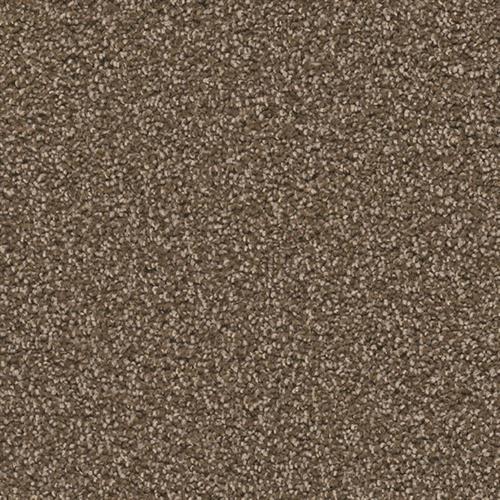 Exceptional II Black Walnut 540