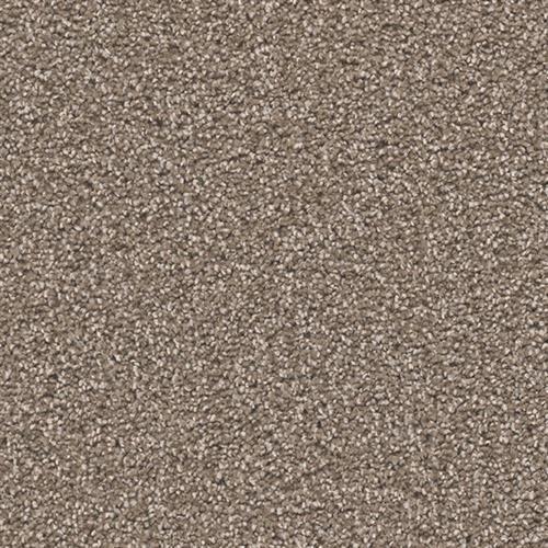EXCEPTIONAL II Tumbleweed 829