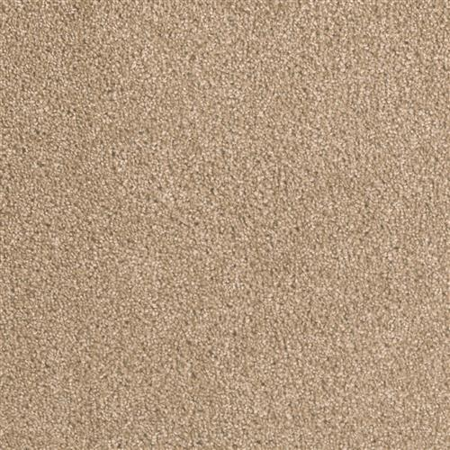Carpet Big Time Sawgrass 701 main image