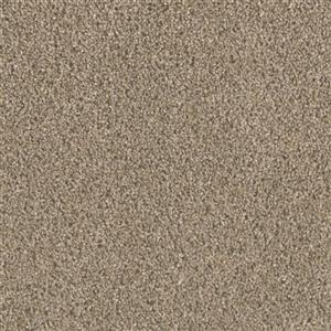 Carpet BigTime 3135835 Cinder