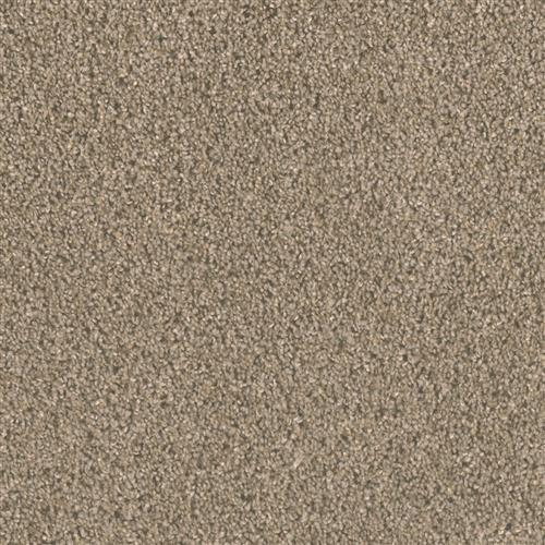 Carpet Big Time Cinder 835 main image