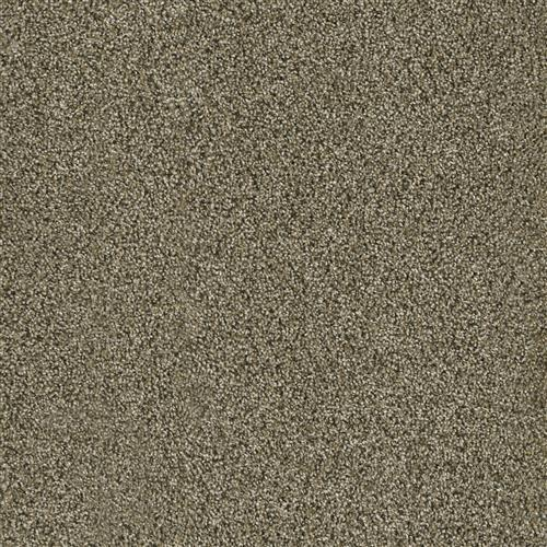 Carpet Acclaim Island Spice 307 main image