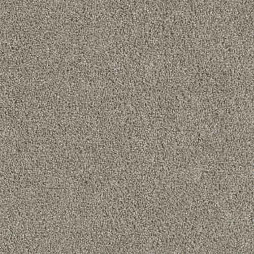 Luxor III Brown 164