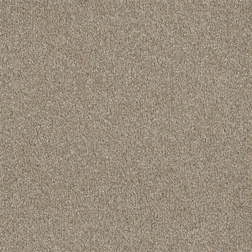 Luxor III Outback 298