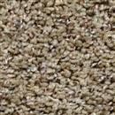 Carpet Step Above Sea Shell 656 thumbnail #1