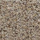 Carpet Adventurous Cat Tail 769 thumbnail #1