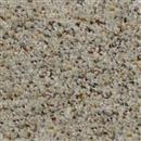 Carpet Adventurous Copley 815 thumbnail #1