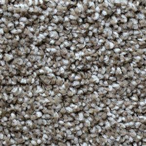 Carpet Exceptional 7402 Tumbleweed