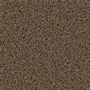 Carpet Broadcast Latte 550 thumbnail #1