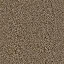 Carpet Broadcast Balsam 565 thumbnail #1