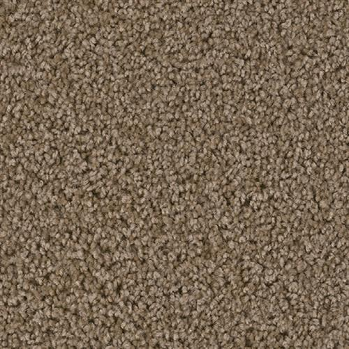 Carpet Broadcast Balsam 565 main image
