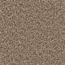 Carpet Broadcast Flattery 781 thumbnail #1