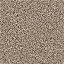 Carpet Broadcast Almond 782 thumbnail #1