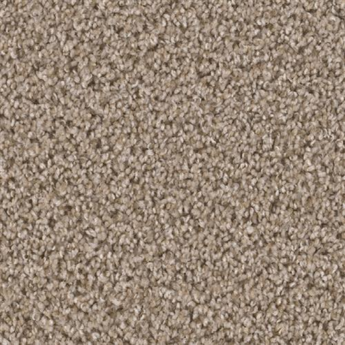 Carpet Broadcast Almond 782 main image